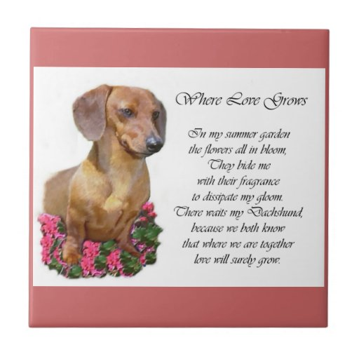 Dachshund Art Gifts Small Square Tile