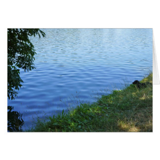 Dachshund At the Lake Photo Greeting Card