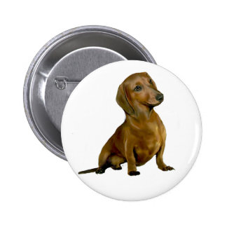 Dachshund (B) - brown-red Pins