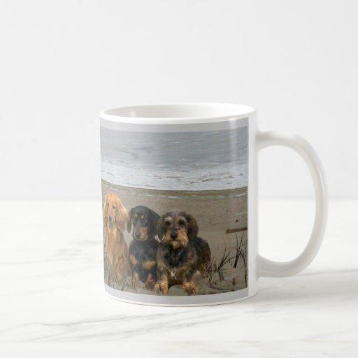 Dachshund Beach Mug Have Moxie