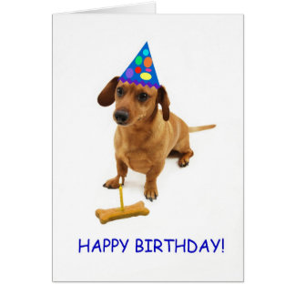Dachshund Birthday Card by Focus for a Cause