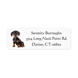 Dachshund Black And Brown Puppy Dog Personalized Label