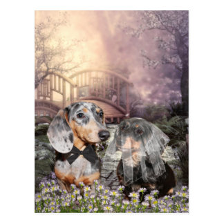 Dachshund bride and groom postcard