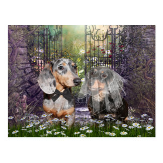 Dachshund bride and groom post card