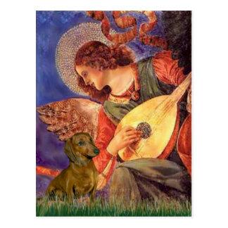 Dachshund (brown1) - Mandolin Angel Postcard