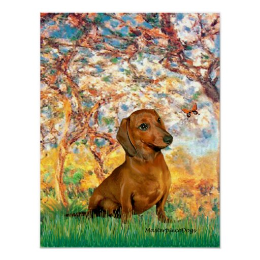 Dachshund (brown1) - Spring Posters
