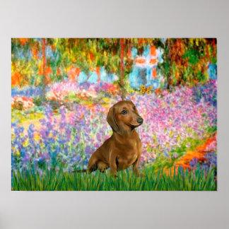 Dachshund (brown 1) - Garden Poster