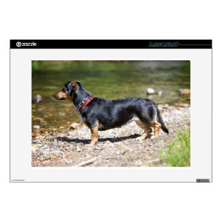 """DACHSHUND BY CREEK SKIN FOR 15"""" LAPTOP"""