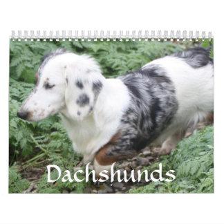 Dachshund Calendar
