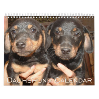 Dachshund Calendar 2016 Personalize It With Photos