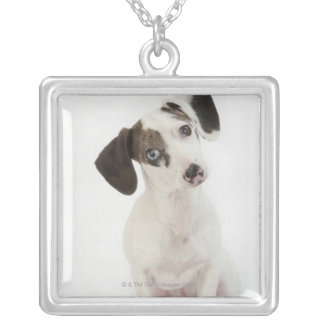 Dachshund/Chihuahua female puppy staring Square Pendant Necklace