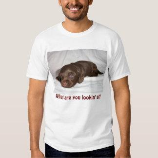 Dachshund Chocolate Longcoat Pup Tee Shirt