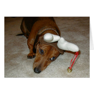 Dachshund Christmas Card - Reluctant Reindeer