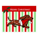Dachshund Christmas Cartoon Post Card