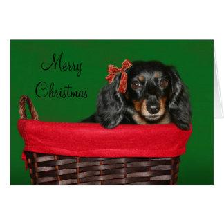 Dachshund Christmas Greeting Cards