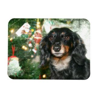 Dachshund Christmas Magnet