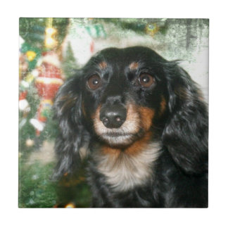 Dachshund Christmas Small Square Tile