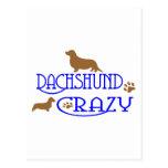 DACHSHUND CRAZY POST CARD
