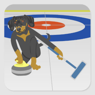 Dachshund Curling Square Sticker