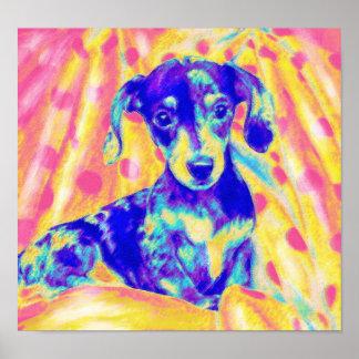 dachshund del arco iris poster
