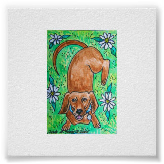 Dachshund del doxie posters