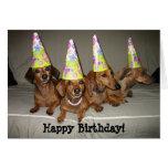 Dachshund del feliz cumpleaños tarjetón