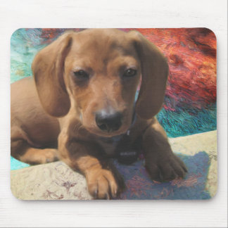 Dachshund - Dog Art - Painting - Pet Portrait Mouse Pad