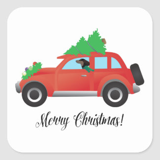Dachshund Dog Driving Car - Christmas Tree on Top Square Sticker