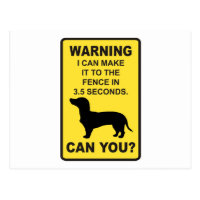Dachshund Dog Humorous  Doxon funny saying Postcard