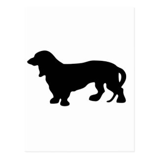 Dachshund Dog Lover Postcard