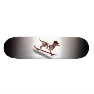 Dachshund Dog Skateboarder Skateboard