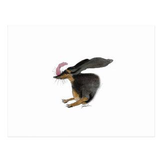 Dachshund dog, tony fernandes postcard
