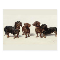 Dachshund dogs vintage art cute postcard