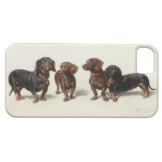 Dachshund dogs vintage art iphone 5/5s case