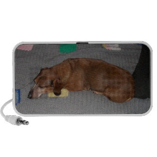 Dachshund Doodle Notebook Speakers