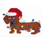 Dachshund enredado en las luces de navidad (rojas) tarjeta postal