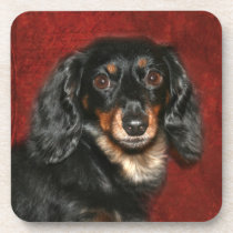 Dachshund face drink coaster