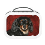 Dachshund face lunchboxes