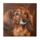"""Dachshund face tile<br><div class=""""desc"""">Long haired,  red colored dachshund face photo ceramic tile</div>"""