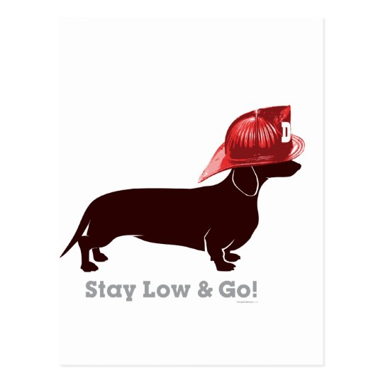 """Dachshund Firefighter """"Stay Low"""" Postcard"""