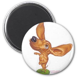 dachshund fridge magnet