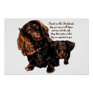 Dachshund Friendship Poster