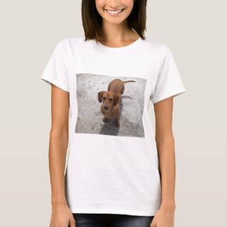 dachshund full.png T-Shirt