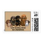 Dachshund Gang Postage Stamp