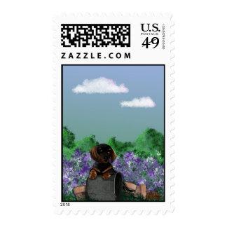 dachshund garden stamp