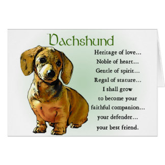 Dachshund Gifts Card