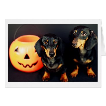 Halloween Themed Dachshund Halloween Card