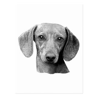 Dachshund - imagen estilizada tarjeta postal
