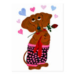 Dachshund In Pink Heart Shorts Postcards