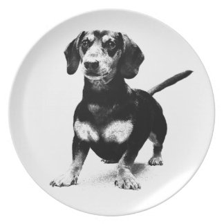 Dachshund Ink Drawing Dinner Plates